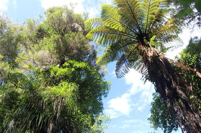 Abel-Tasman Nationalpark