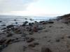 Steine, Muscheln, Sand - alles was einen Strand reizvoll macht